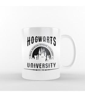 ماگ Hogwarts University