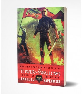 The Tower of Swallows (The Witcher (4))